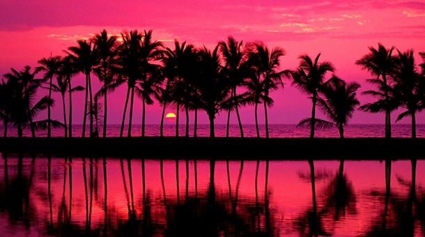Para 237 Sos De Hawai Catai Tours