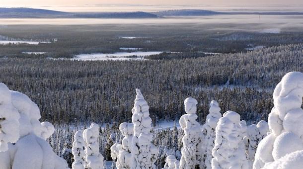 Desde lo alto de la colina en Iso-Syöte, Laponia