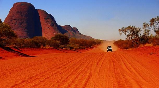 Catstop australia