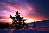 Amanecer en Levi, Laponia