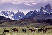 Los Andes, Patagonia argentina