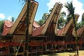 Arquitectura tradicional en madera policromada y techo curvo, Célebes