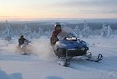 Motos de nieve en Saariselka, Laponia