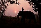 Paseo en elefante al atardecer