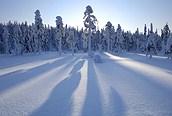 ¡Todo nevado!, Laponia