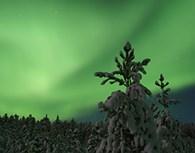 Aurora Boreal en Saariselkä