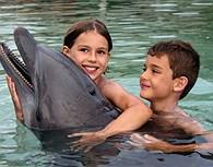Baño con delfines, Bora Bora