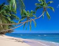 Playas de Fiji